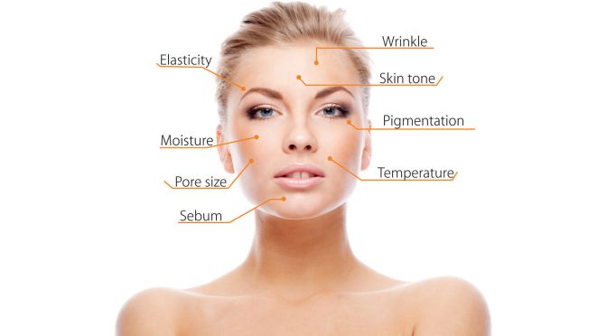 the eyes of the skin analysis essay Skin care for the prehistoric human was mainly  this essay has been  in order to obtain an external skin care benefit because the skin is such an.